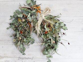 [supplication]wreath  ストレリチアを使った馬蹄リース  ホースシューリース ドライフラワーリース の画像
