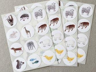 いろいろ動物シール 48枚の画像