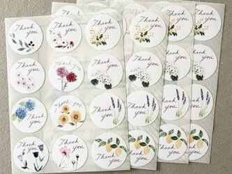 いろいろ植物サンキューシール 48枚の画像