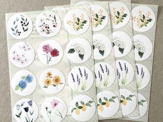 いろいろ植物シール 48枚の画像