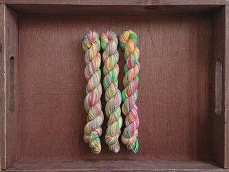インダスからの贈り物【オリジナル段染め糸  細】(573) 1本の画像