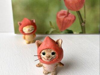 ほおずき猫さん(キジトラ)の画像
