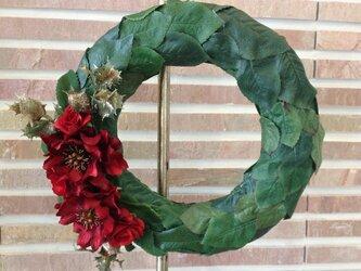クリスマス向け★クリスマスローズとバラのリーフのリースの画像