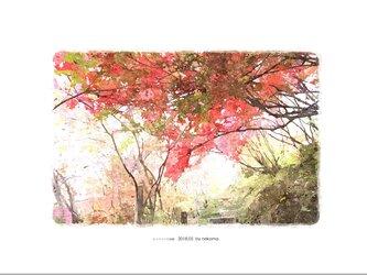ヤマツツジの回廊(油絵風)の画像