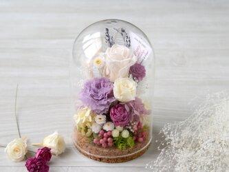 ガラスドーム purple raspberryの画像