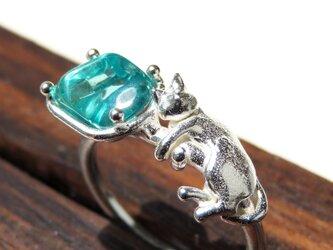 アパタイトと猫リング * Apatite & Cat Ringの画像