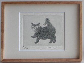 元気な子猫/銅版画(額あり)の画像