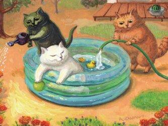 カマノレイコ オリジナル猫ポストカード「プール」2枚セットの画像
