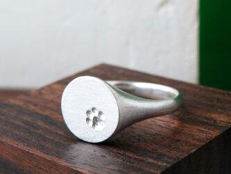 シグネッコ リング * Cat Paw Signet Ring gの画像