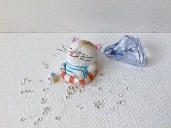 浮き輪で、まったり猫さん 白茶トラの画像