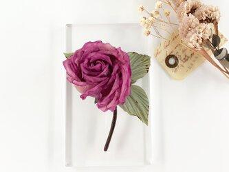 """Corsage : コサージュ """" Antique, Rose. """"   赤紫  の画像"""