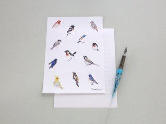 便箋15枚セット 小鳥の画像