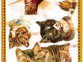 イギリス製クロモス 猫のお手紙 ラメなし DA-CHE039の画像