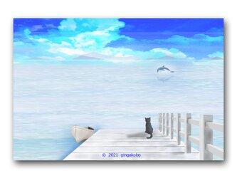 「今日を飛ぶイルカくんに逢いに」 猫 黒猫 ほっこり癒しのイラストポストカード2枚組No.1412の画像
