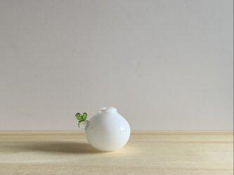 芽一輪  一輪挿し 白の画像