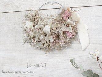 「スコール1/2」wreath   ルナリアのちいさなワイヤーハーフリース  ドライフラワーリース ルナリア かすみ草の画像