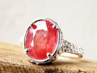 サファイア リング * Sapphire Ring oの画像