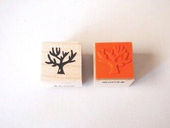 <ゴム製スタンプ>約束 の 木(冬)の画像