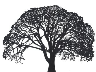 額装済み切り絵原画・大樹の画像