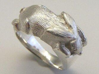 SV925 シルバーリング 銀のうさぎの画像