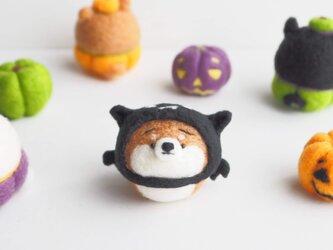【受注製作】~ハロウィンコスプレ~コウモリまゆ柴犬(赤柴・黒柴・白柴) 羊毛フェルトの画像
