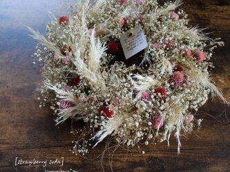 [strawberry soda] wreath  かすみ草と千日紅のリース  パンパスグラス  ドライフラワーリース の画像