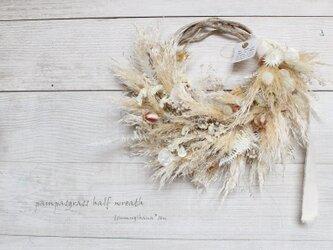パンパスグラスのハーフリース  ルナリア  ドライフラワーリース の画像