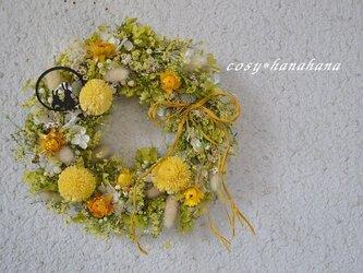 月うさぎの秋花wreathの画像