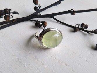 prehnite silver ringの画像