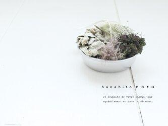 ブリッカブラック RS-MVの画像