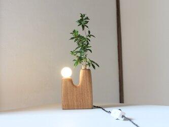 木の花瓶ランプ【タモ】の画像