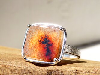 デンドリティック アゲート リング * Dendritic Agate Ring □の画像
