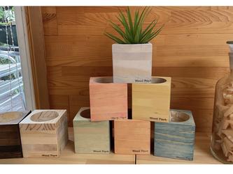 wood cube  木製 鉢カバー 観葉植物 カラフルバージョン ガーデニングの画像