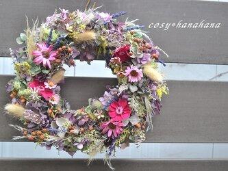 コスモス秋wreathの画像