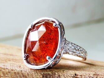 モスカイヤナイトリング * Moss Kyanite Ring rlの画像