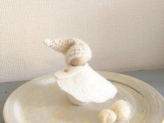 snow dollの画像