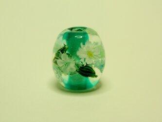 水中花(グリーン)の画像