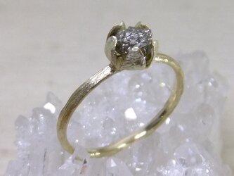 『ピエリスの抱擁』rough dia*K10 ringの画像