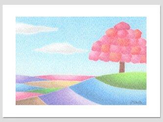 光を集めて(2Lサイズ。色鉛筆画。複製画)の画像