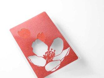 切り絵 カード しおり 名刺 桜 赤の色渋紙 1枚の画像