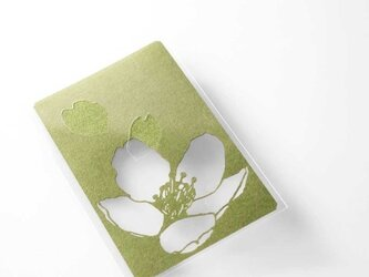 切り絵 カード しおり 名刺 桜 抹茶の色渋紙 1枚の画像