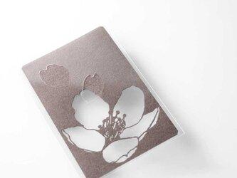 切り絵 カード しおり 名刺 桜 濃灰の色渋紙 1枚の画像