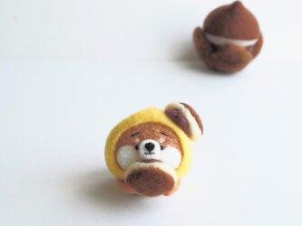 【受注製作】なりきり栗どら焼きのまゆ柴犬(赤柴・黒柴・白柴) 羊毛フェルトの画像