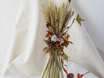 麦の秋色パニエの画像