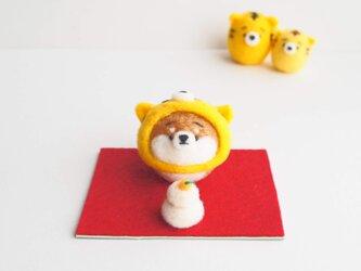 【受注製作】2022年干支(寅) なりきりとら(虎)のまゆ柴犬(赤柴・黒柴・白柴)正月飾りセット 羊毛フェルトの画像