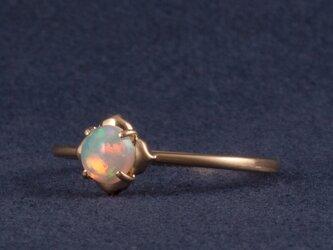 Frame ring / Opalの画像