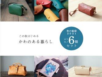 【秋の福袋2021】6個SET人気のショルダーバッグ・口金バッグ・財布・革小物 即納OKの画像