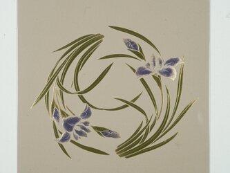 漆の天井絵 山鳩 菖蒲の画像
