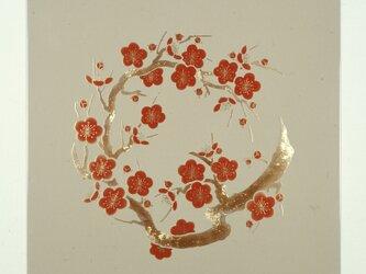 漆の天井絵 山鳩 梅の画像