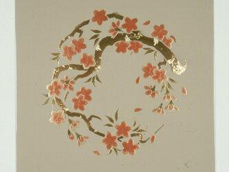 漆の天井絵 山鳩 桜の画像